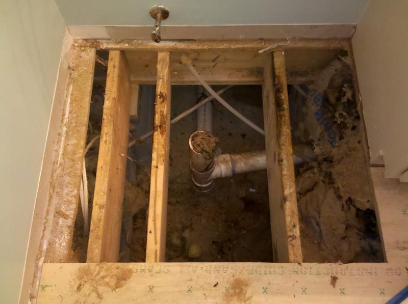 Replacing Bathroom Floor